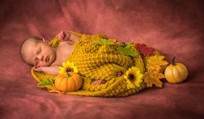 Carol Herbert Newborn and Baby Photography Photographer
